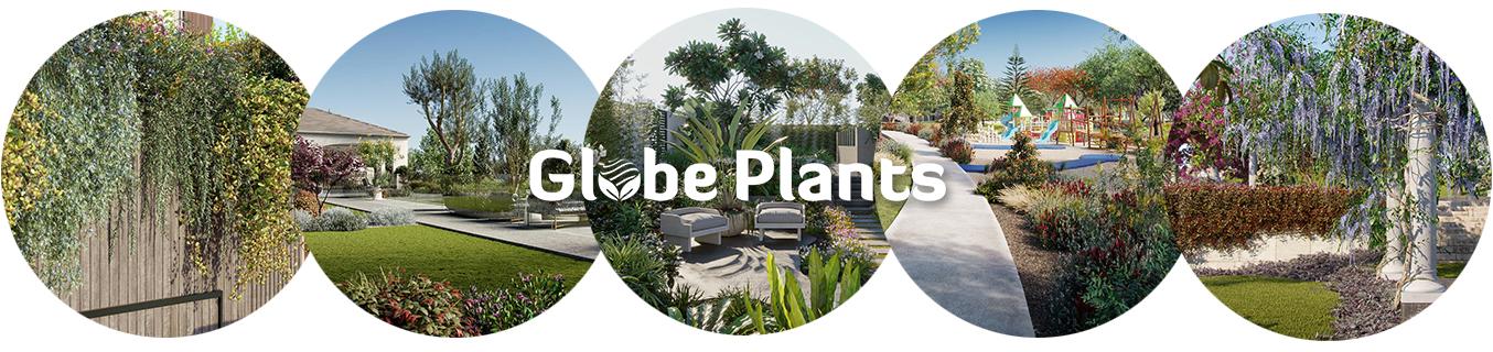 GlobePlants_1500x300